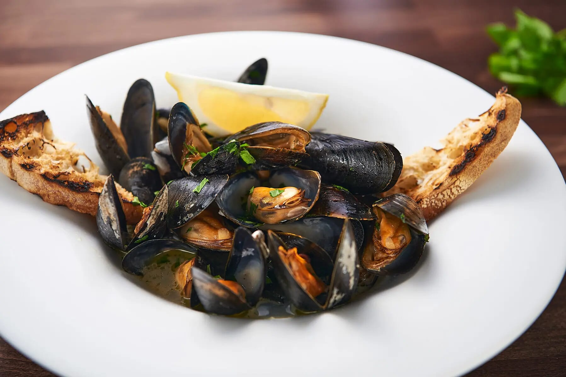 Mussel soup with lemon and toasted bread served in Italian restaurant food photography London